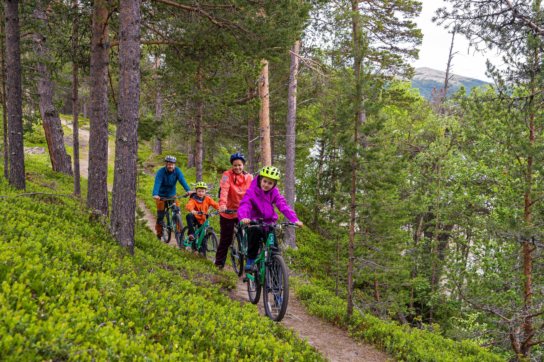 Familie på sykkeltur
