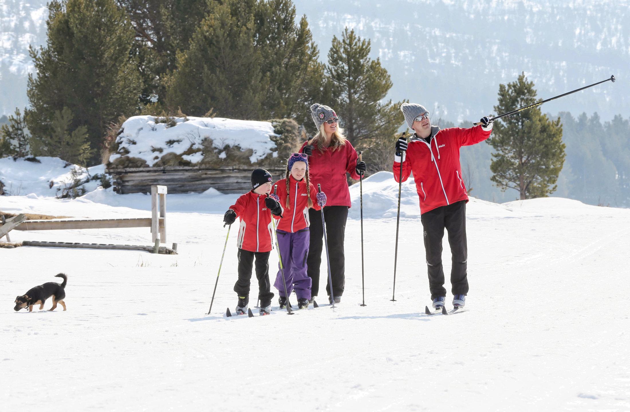 Familie på skitur 2